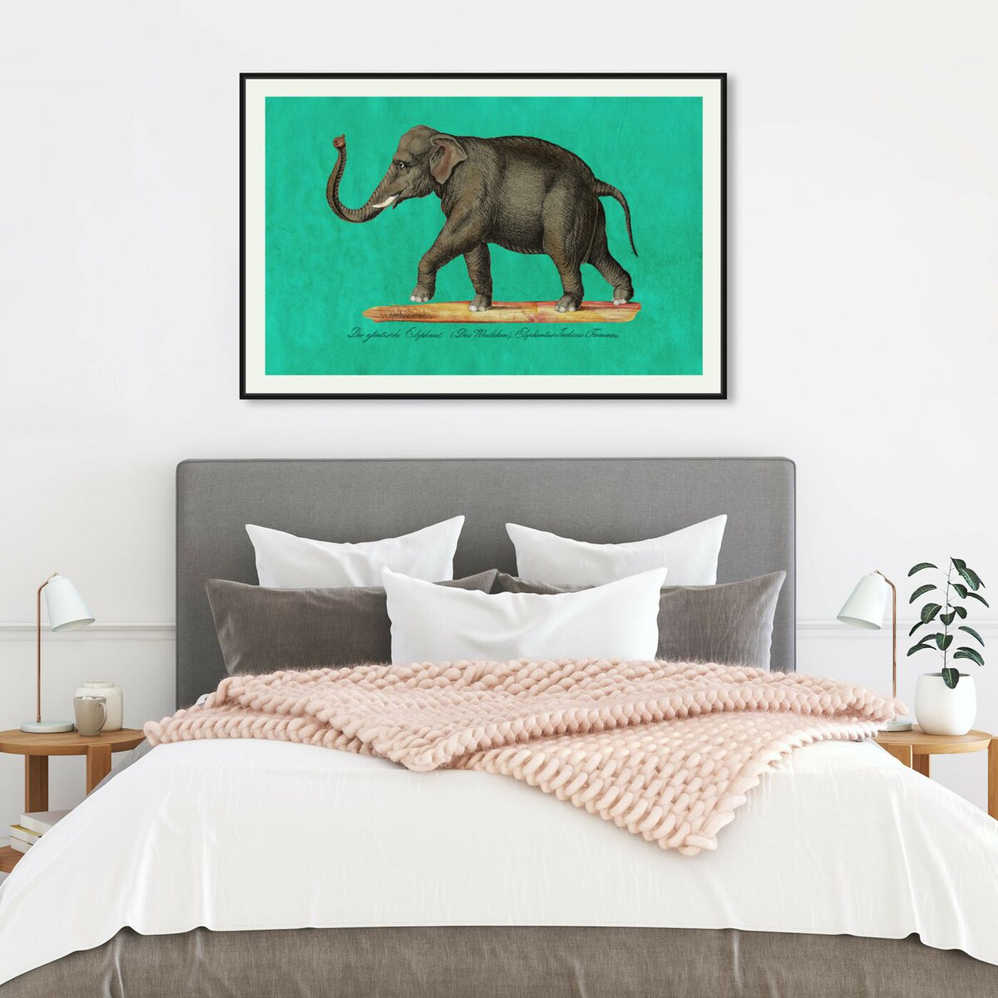 Hanging view of Elephant II featuring animals and zoo and wild animals art.