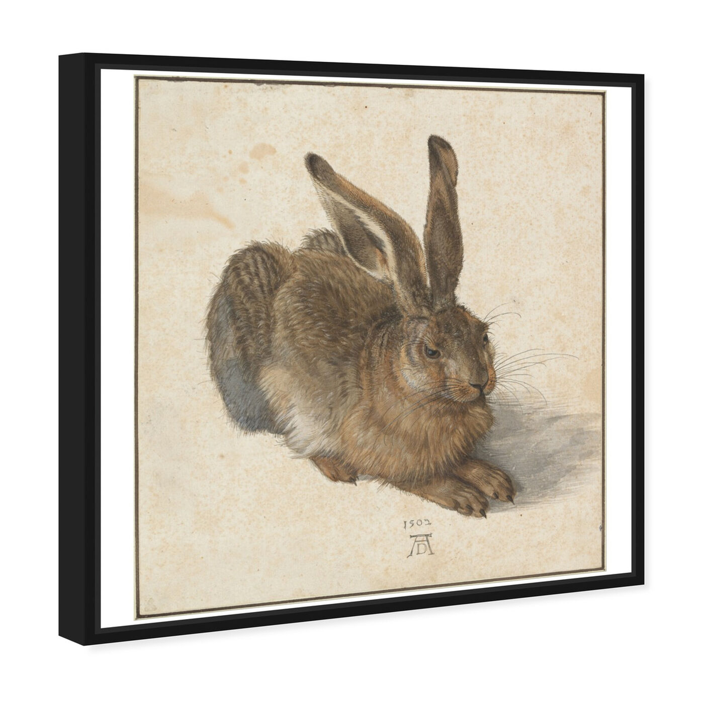Angled view of Durer - Hare featuring animals and farm animals art.