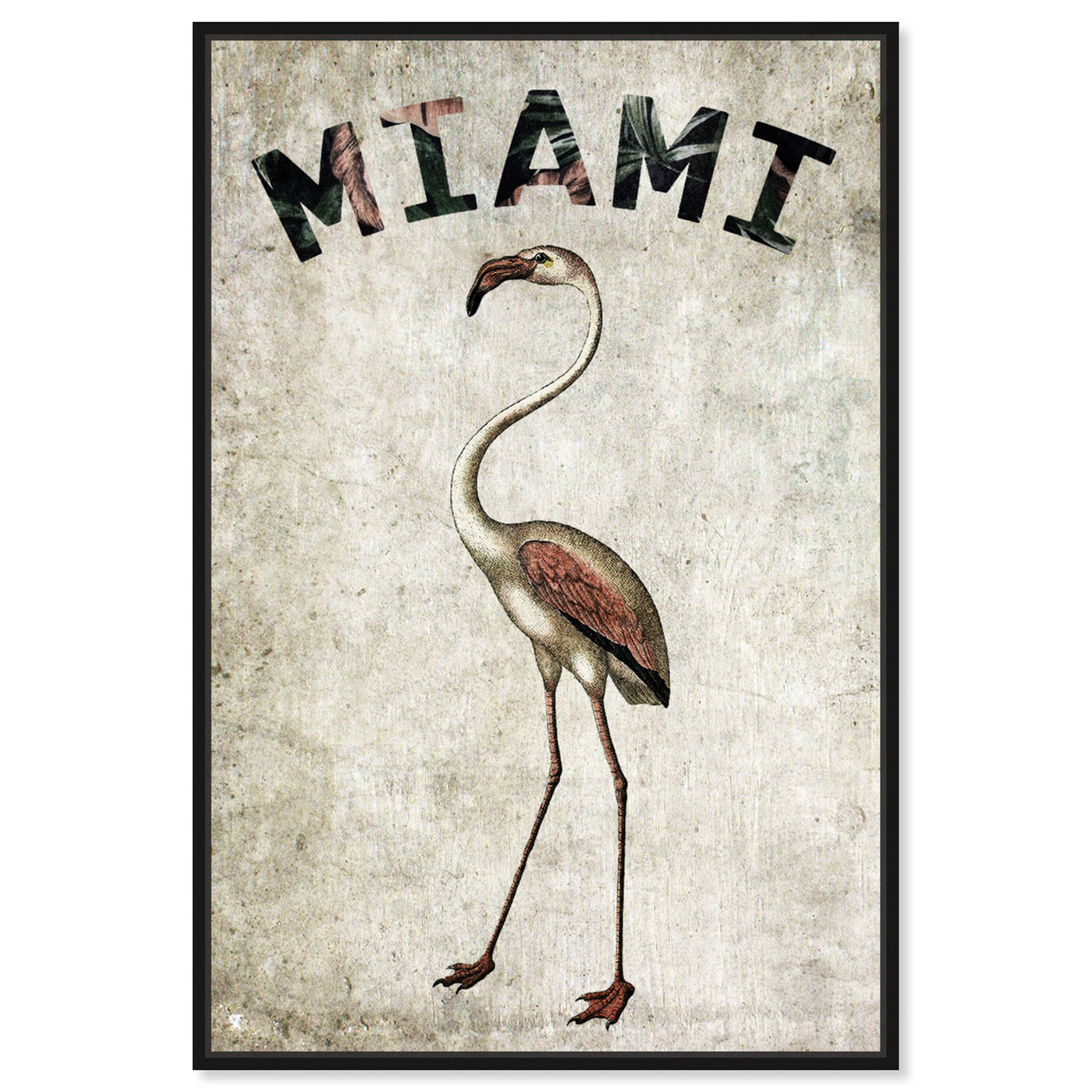 Front view of Miamian Flamingo featuring cities and skylines and united states cities art.