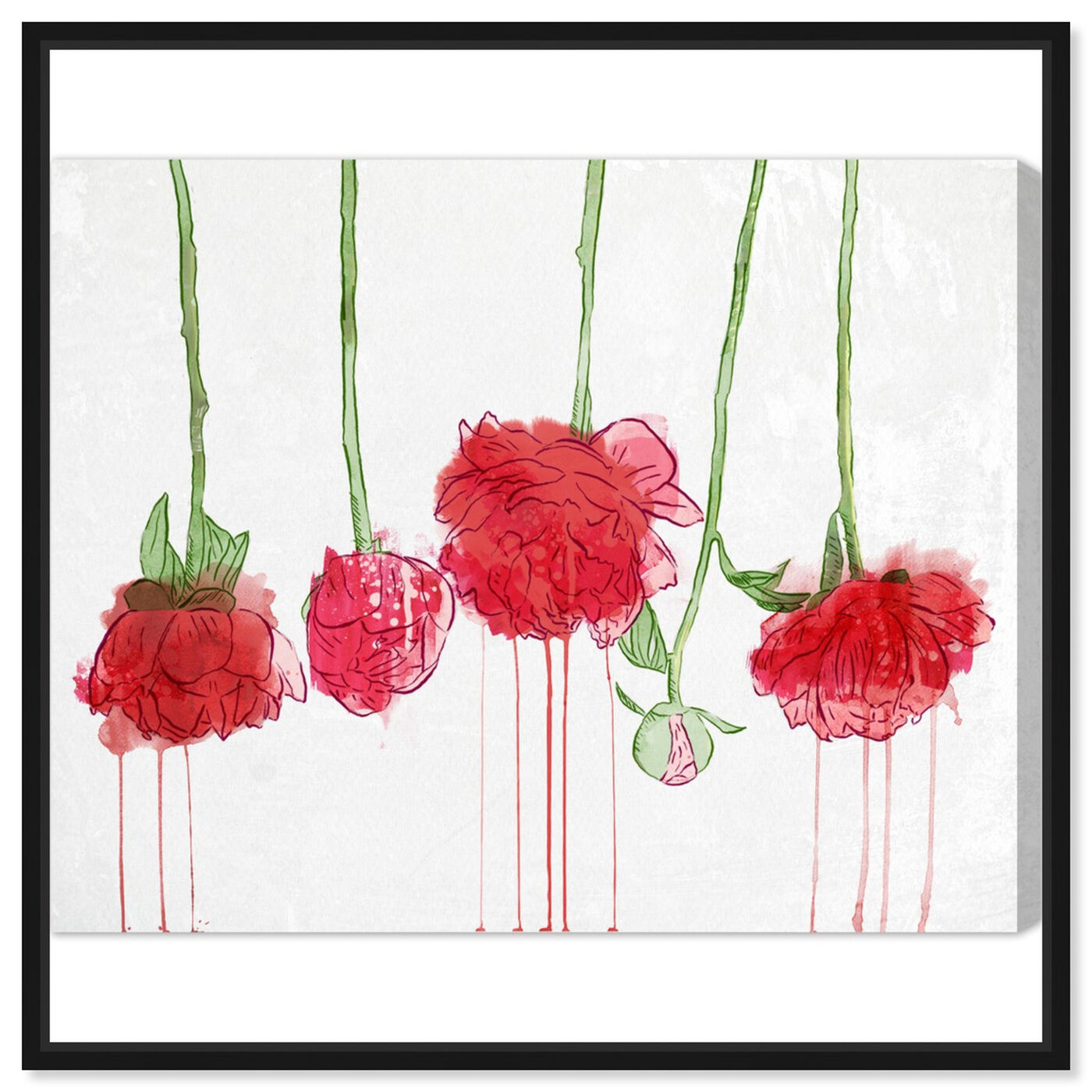Front view of Drying Carnations featuring floral and botanical and florals art.
