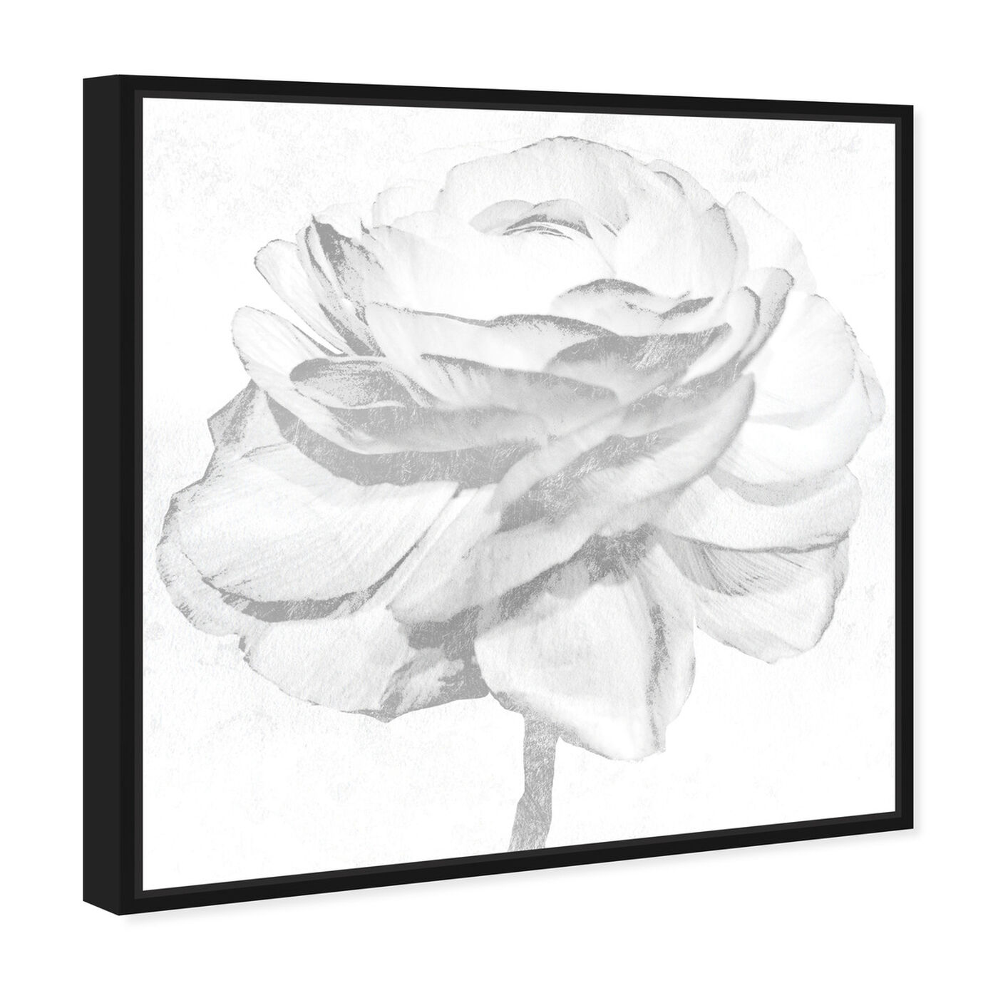 Angled view of White Silver Peony featuring floral and botanical and florals art.