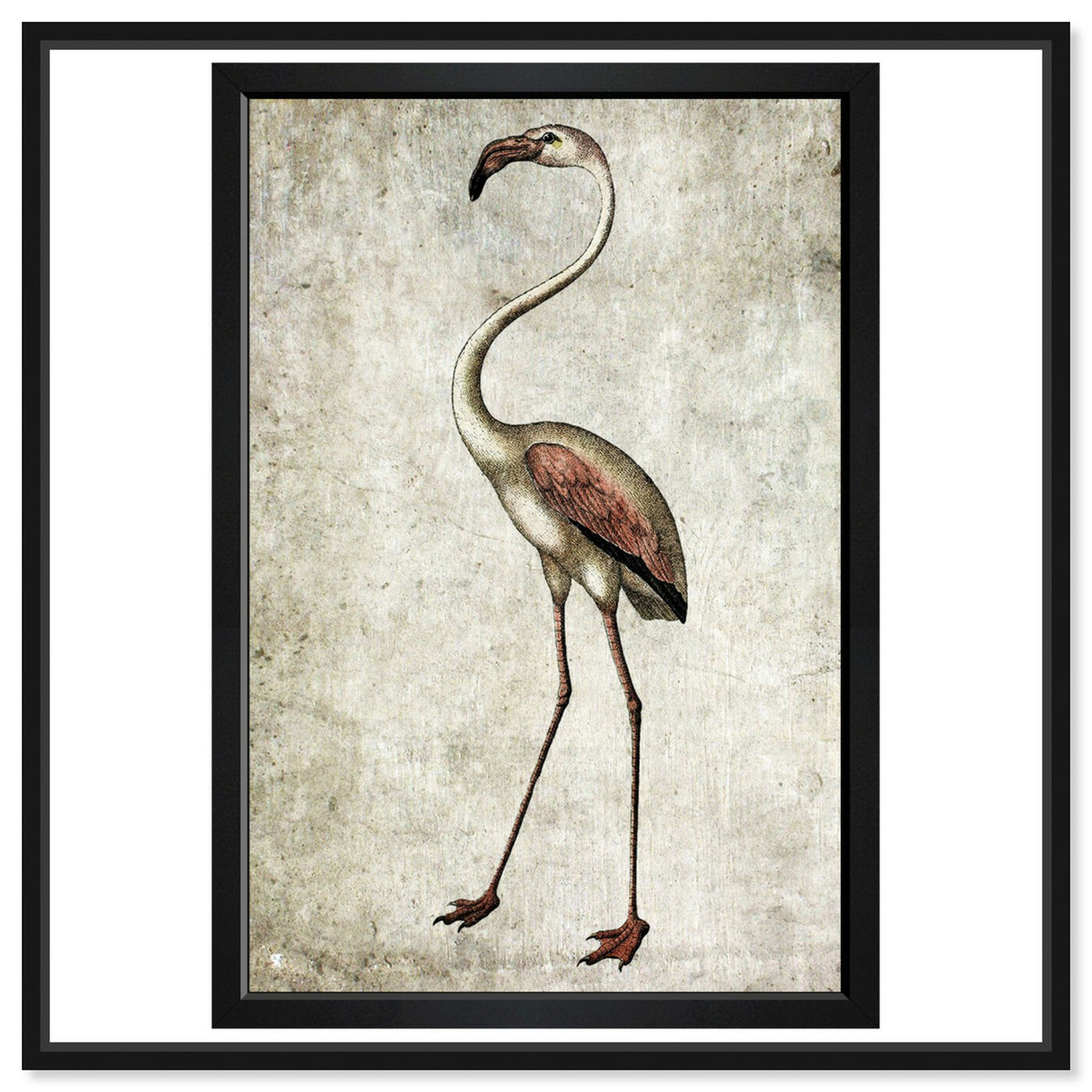 Front view of Vintage Flamingo featuring animals and birds art.