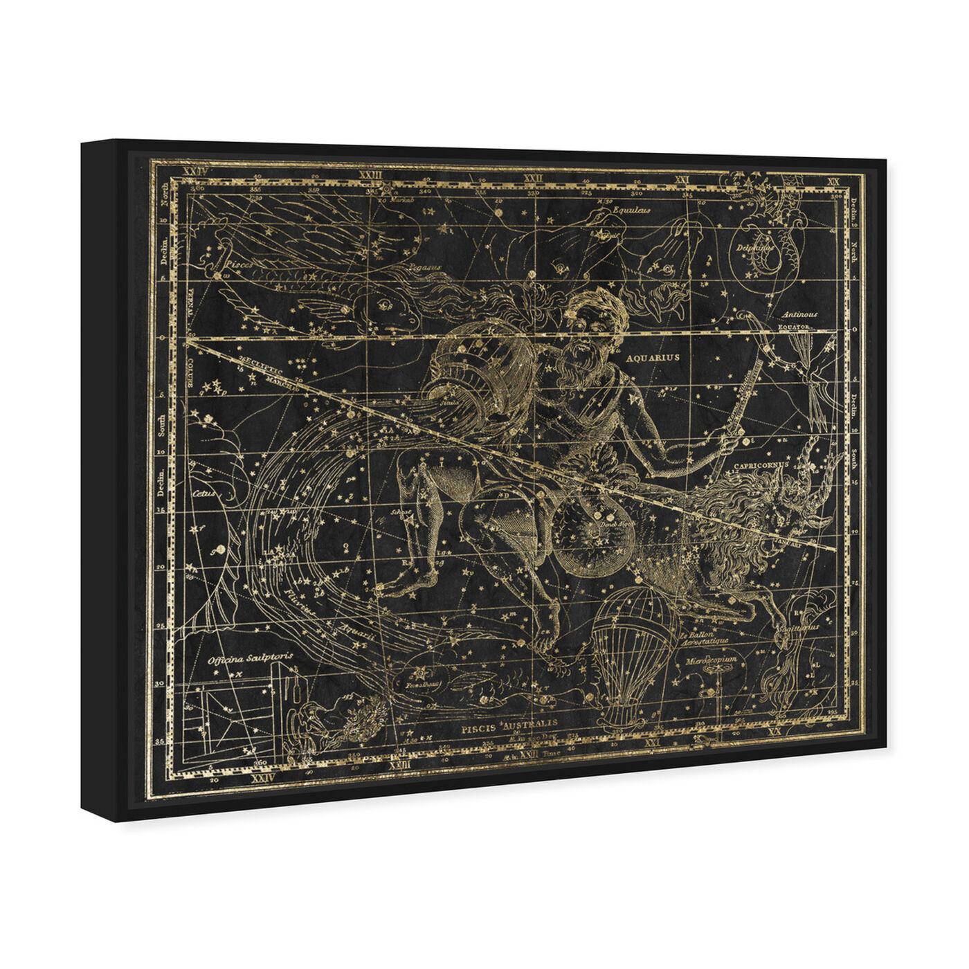 Angled view of Aquarius and Capricornius featuring spiritual and religious and zodiac art.