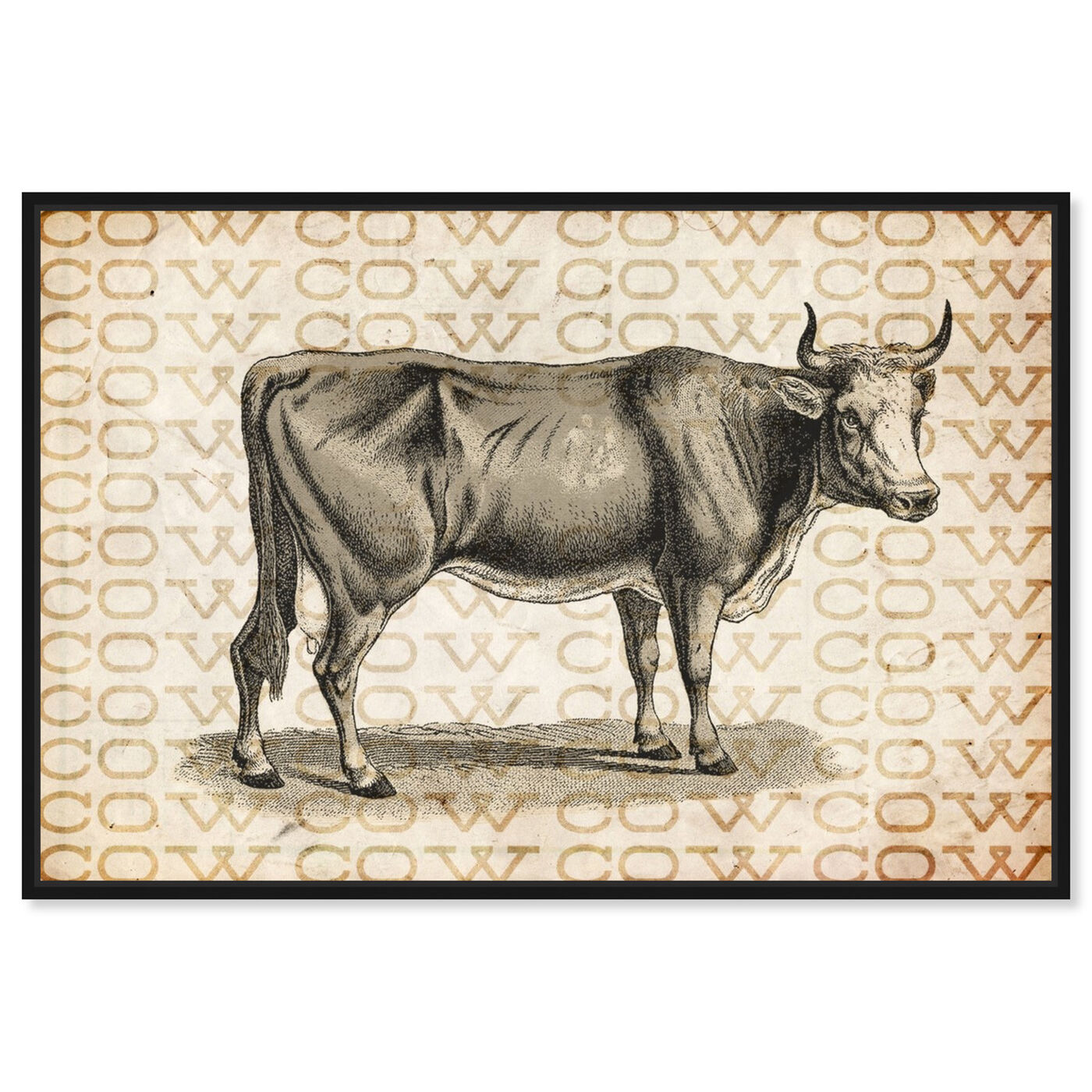 Front view of Cow featuring animals and farm animals art.