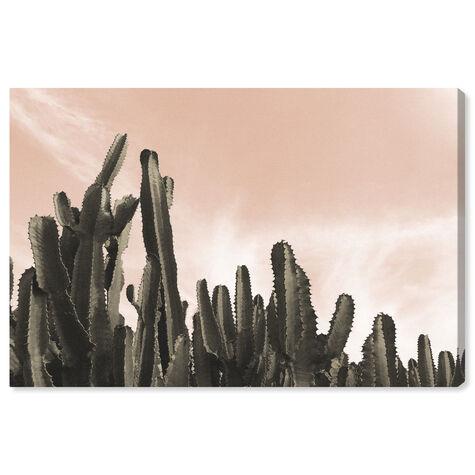 Dream Landscape Cactus Desert