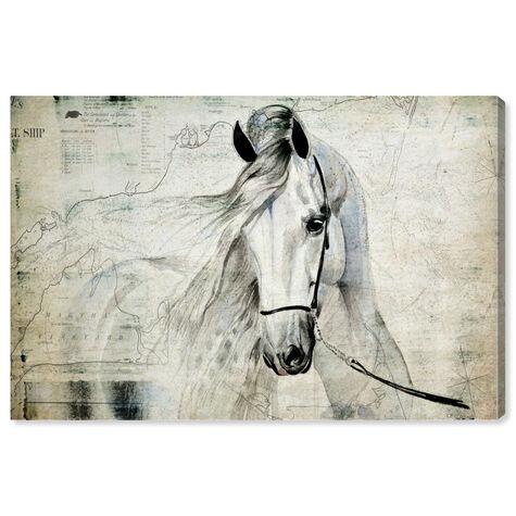 Antiqus Equus