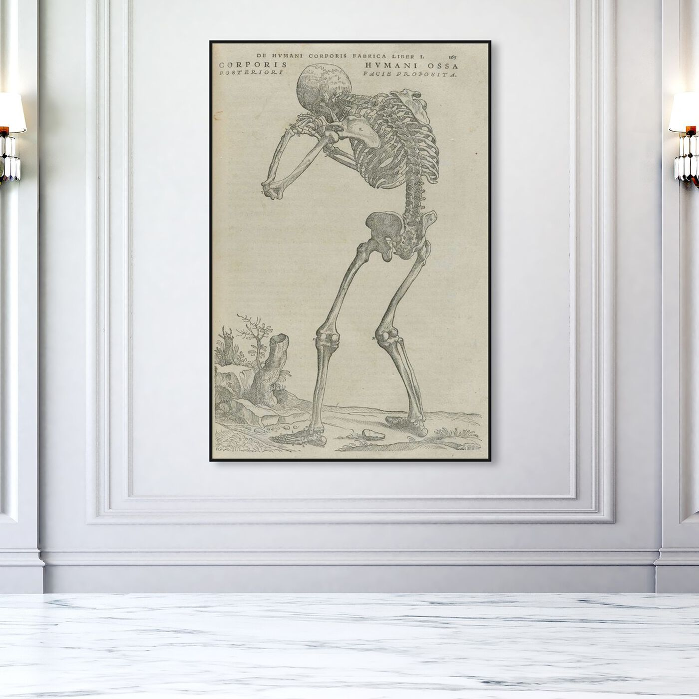 Hanging view of Vesalius VI - The Art Cabinet featuring classic and figurative and classical figures art.
