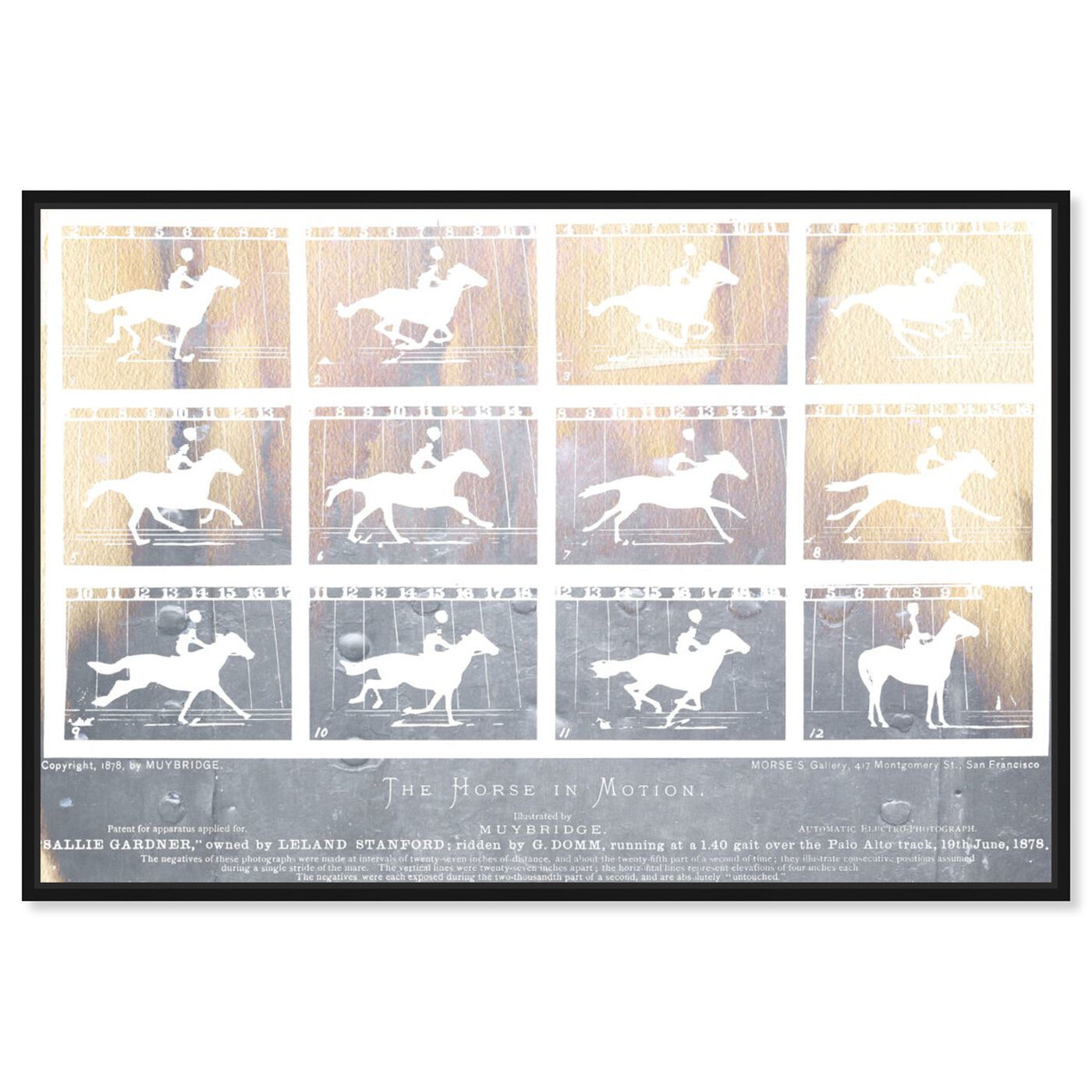 Front view of The Horse in Motion featuring animals and farm animals art.