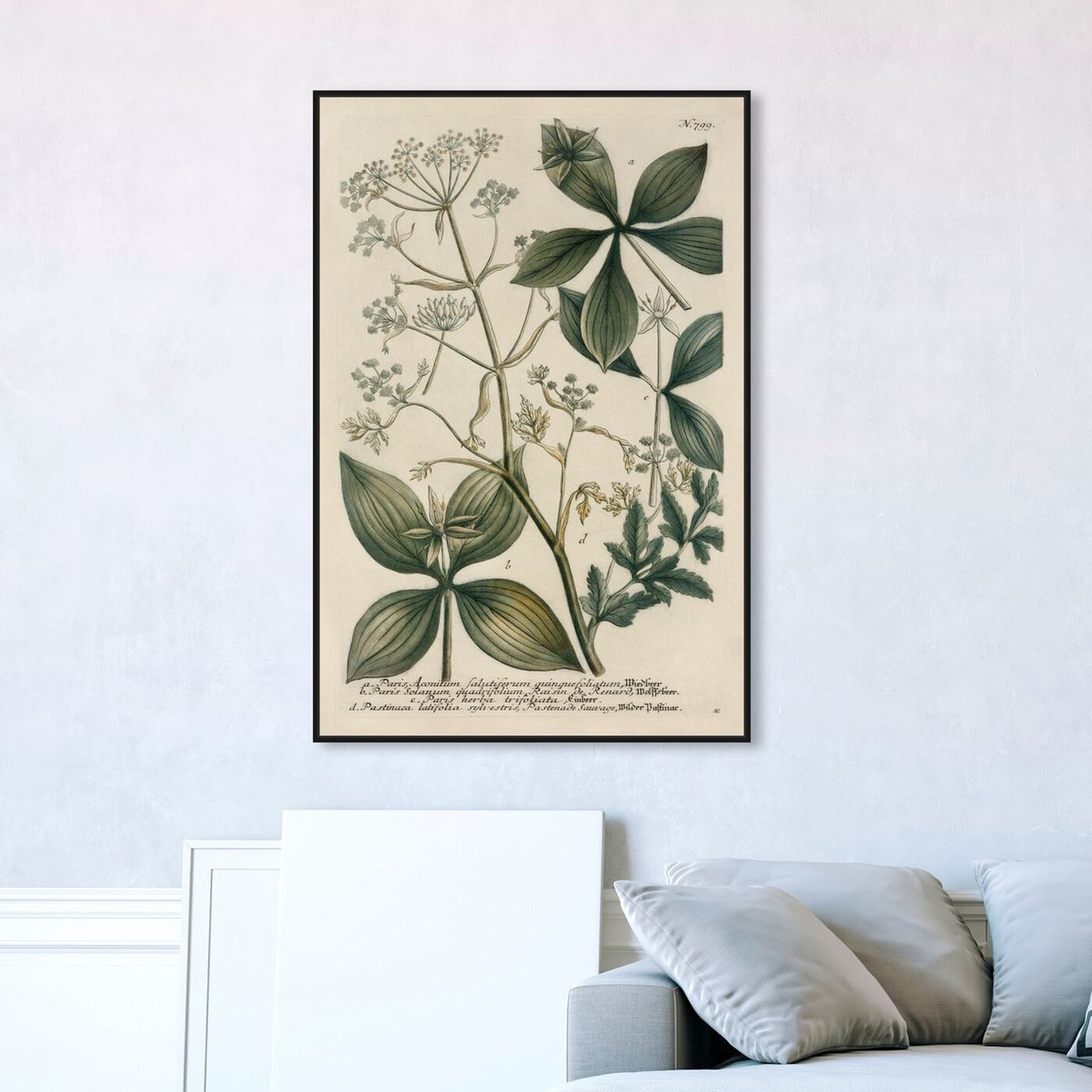 Hanging view of Herbs featuring floral and botanical and botanicals art.