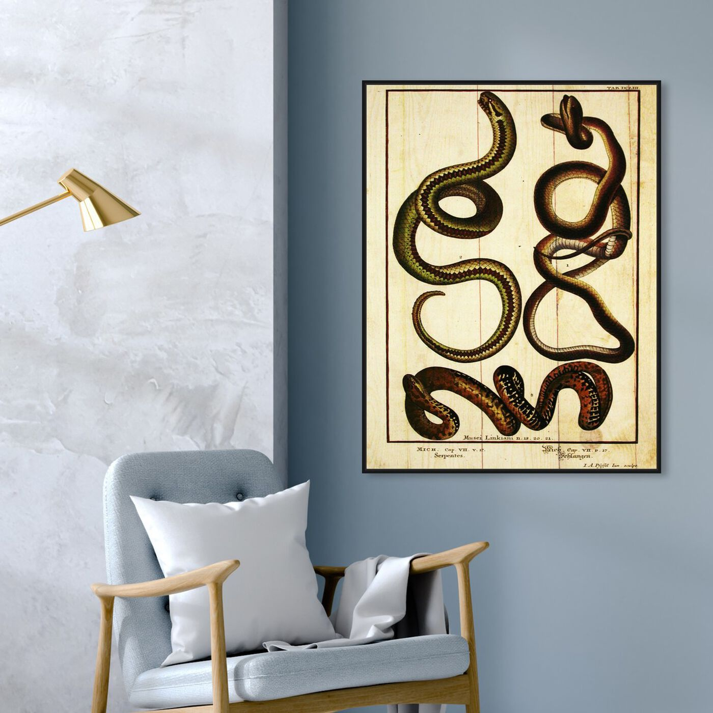 Hanging view of Snakes II featuring animals and zoo and wild animals art.