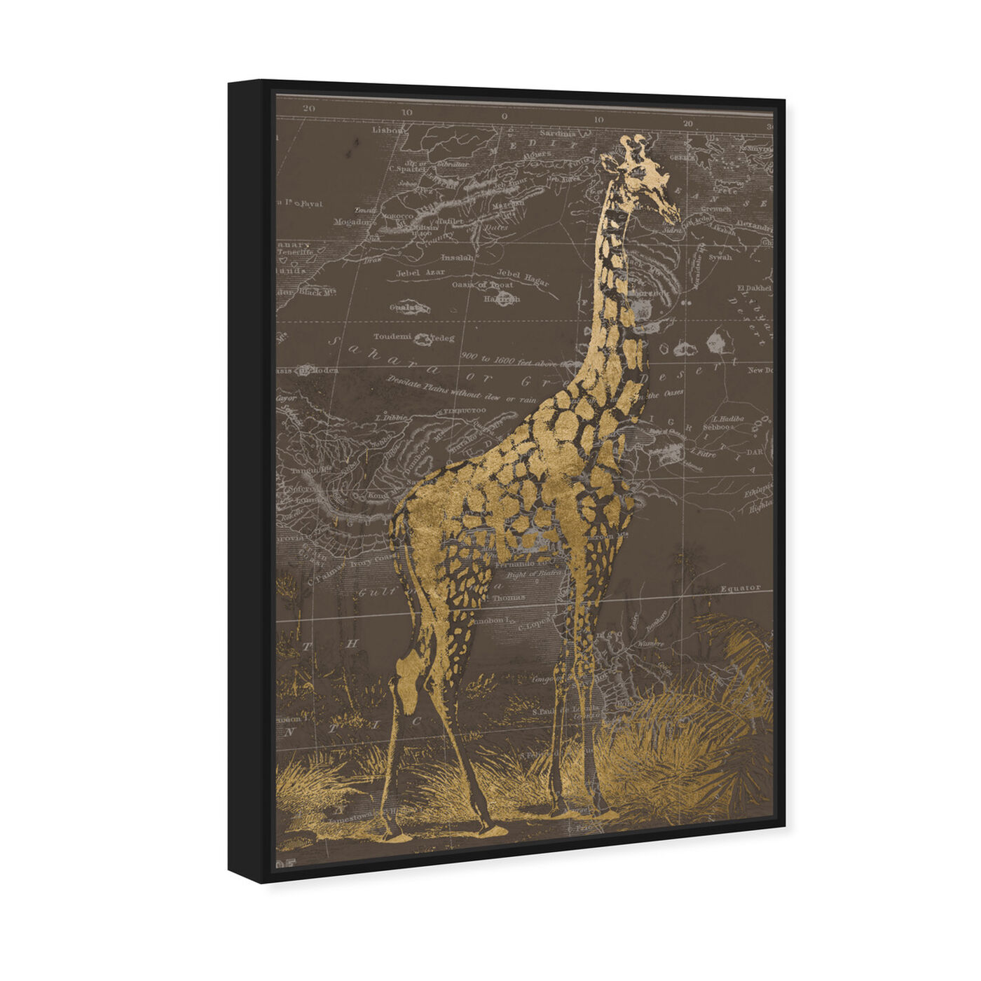 Angled view of Giraffe Sahara featuring animals and zoo and wild animals art.