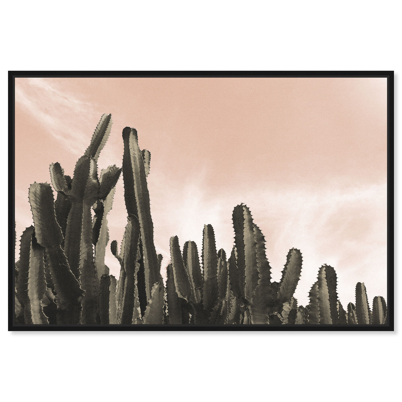 Front view of Dream Landscape Cactus Desert featuring floral and botanical and botanicals art.