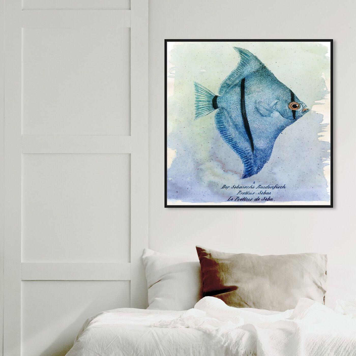 Hanging view of Seba Fish featuring nautical and coastal and marine life art.