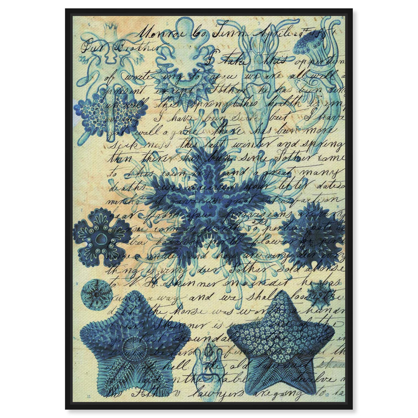 Front view of Starfish in Blue featuring nautical and coastal and marine life art.