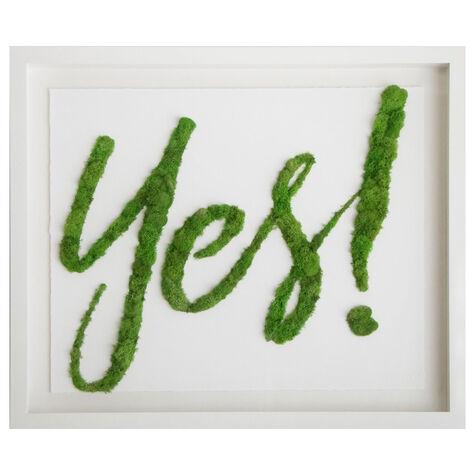 Moss Yes I Botanical Art