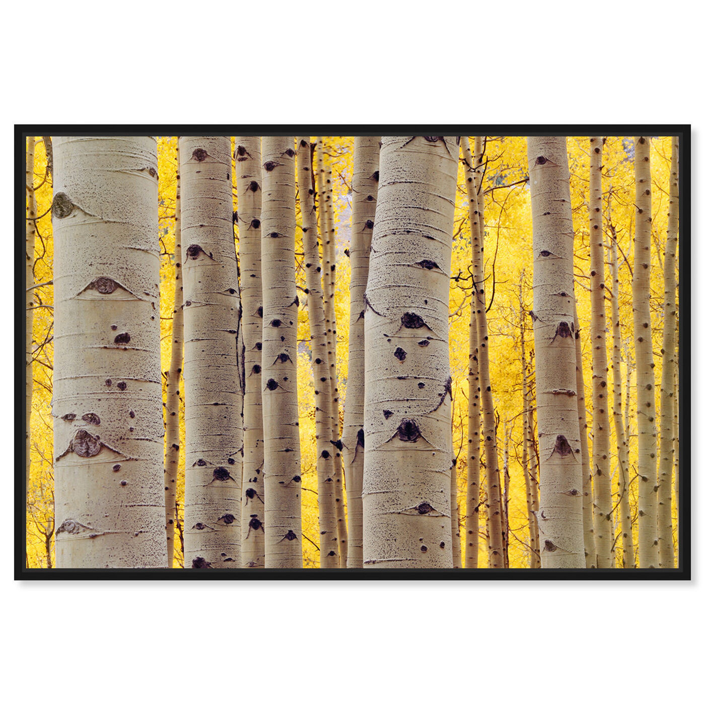 Front view of Aspen Yellow featuring floral and botanical and trees art.