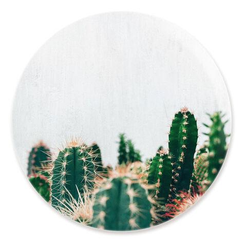 Cactus Family Circle