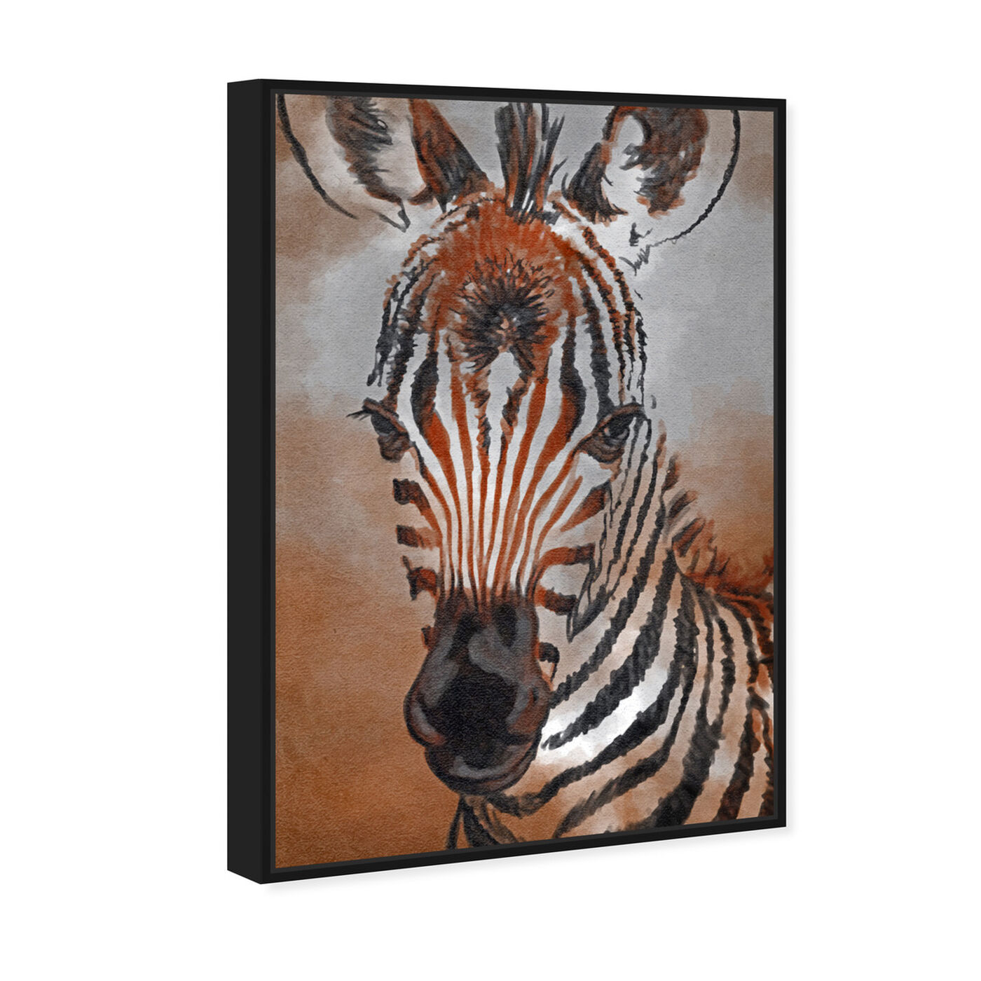 Angled view of Zebra Colt featuring animals and zoo and wild animals art.