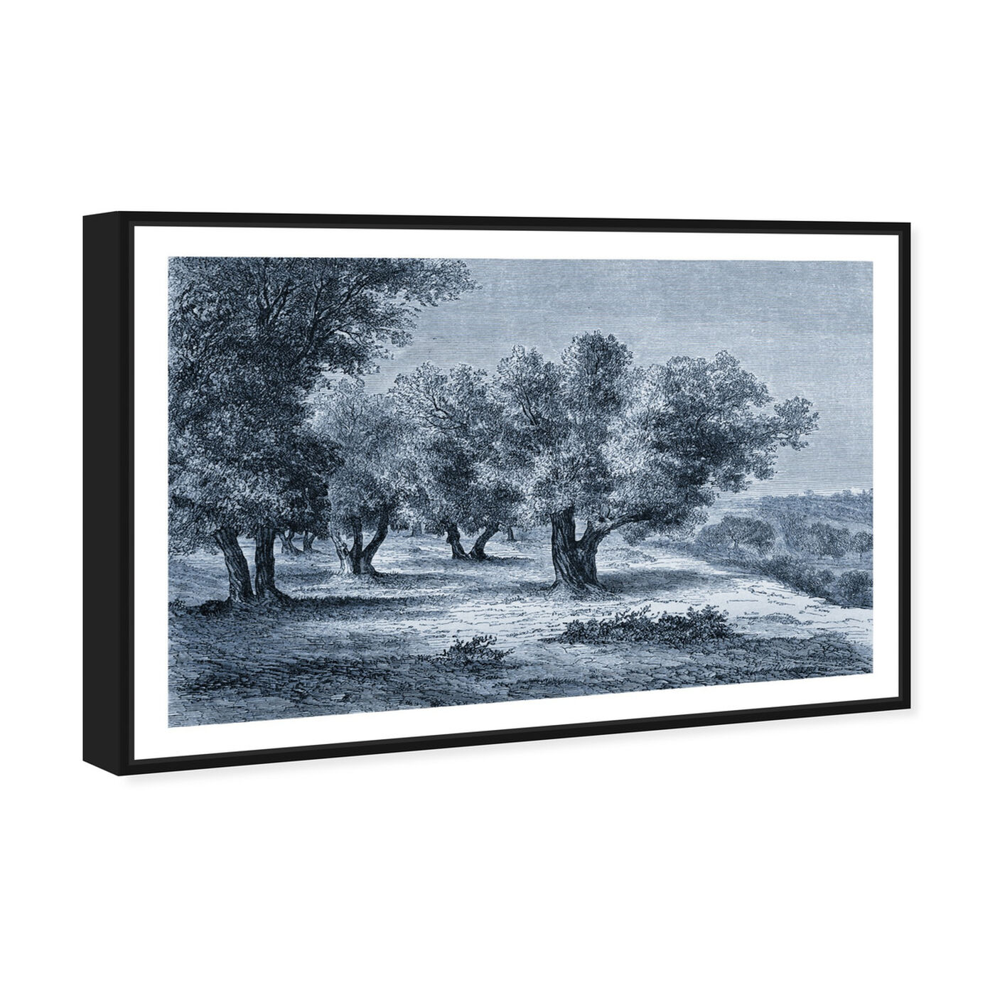 Angled view of Olive Grove 1860 Engraving featuring nature and landscape and forest landscapes art.