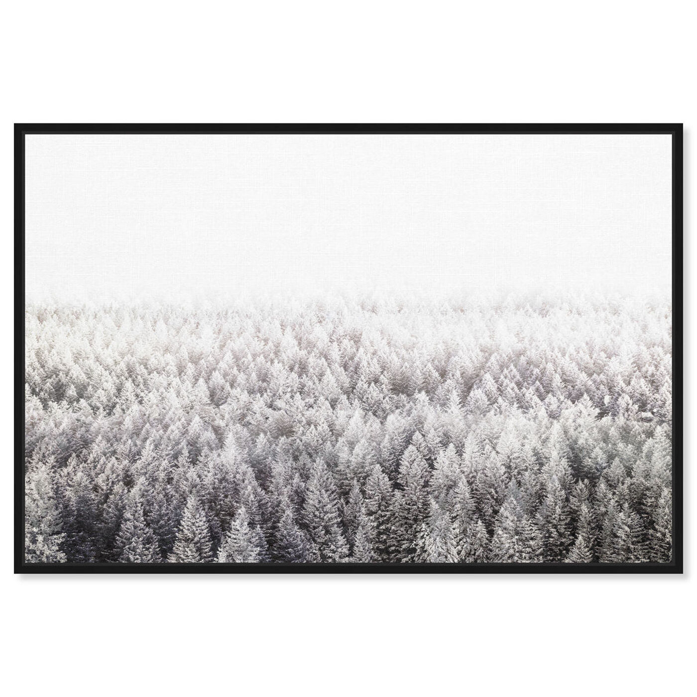 Front view of Pine Forest  Gray featuring nature and landscape and forest landscapes art.