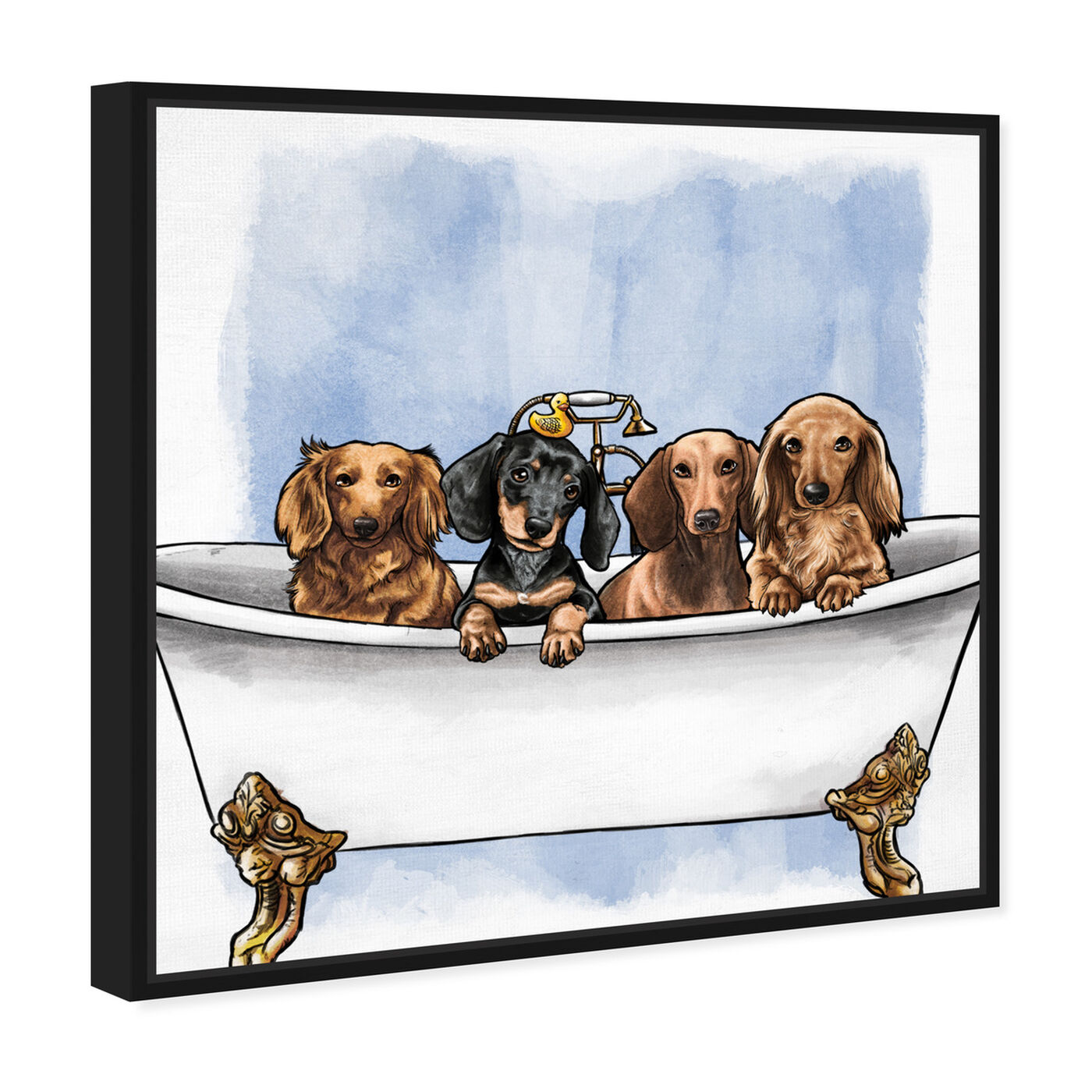 Angled view of Dachs in The Tub featuring animals and dogs and puppies art.