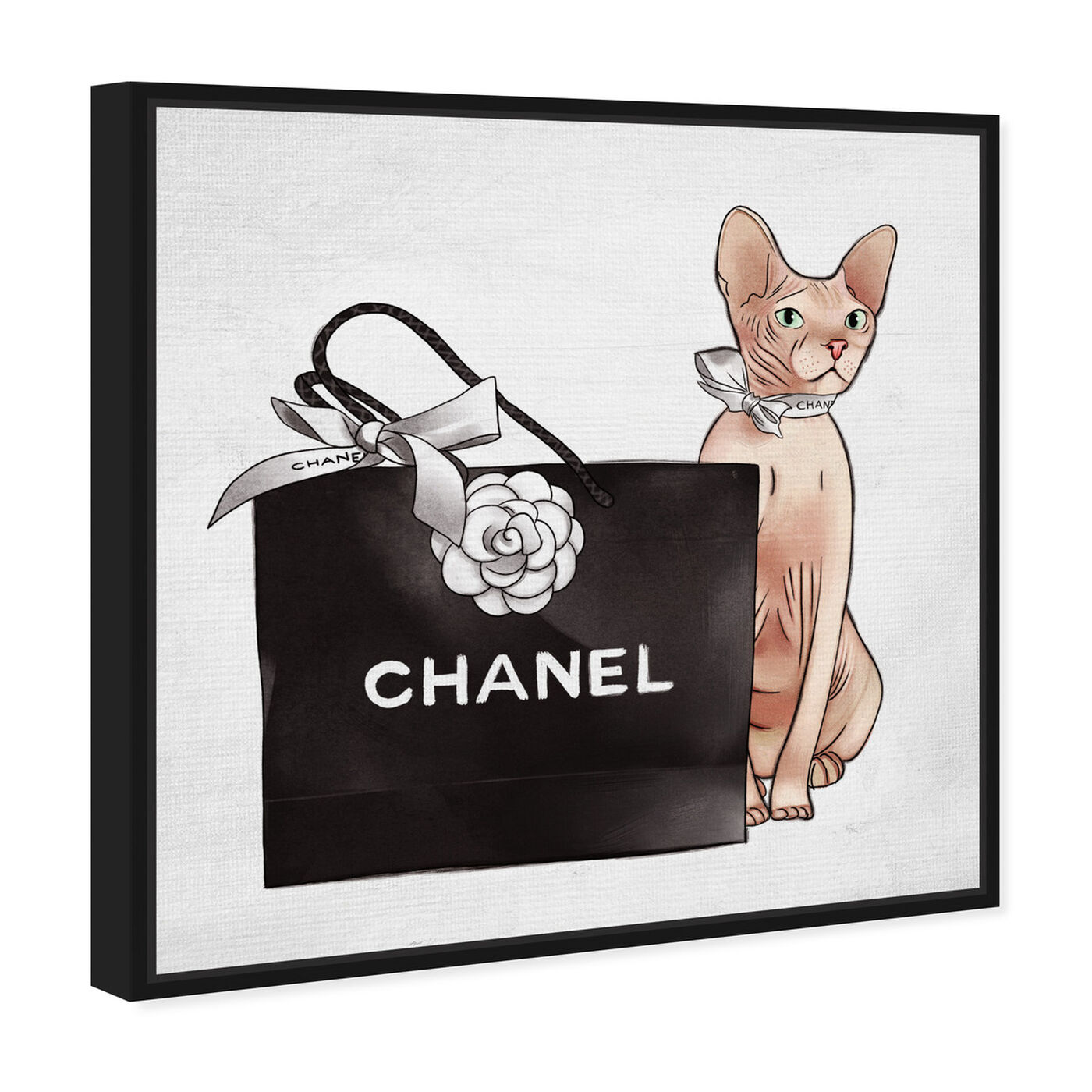 Angled view of Naked Shopper featuring fashion and glam and lifestyle art.