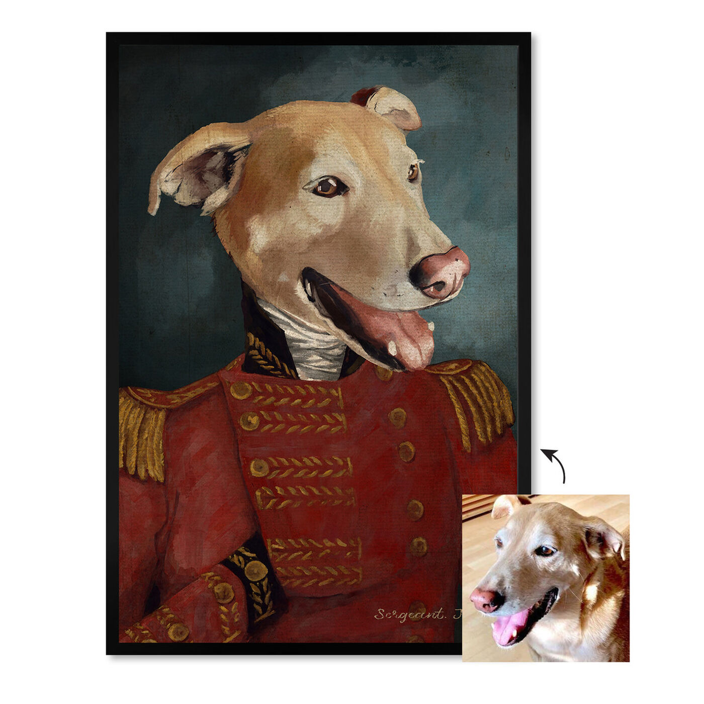 Front view of Dapper Sergeant featuring animals and dogs and puppies art.