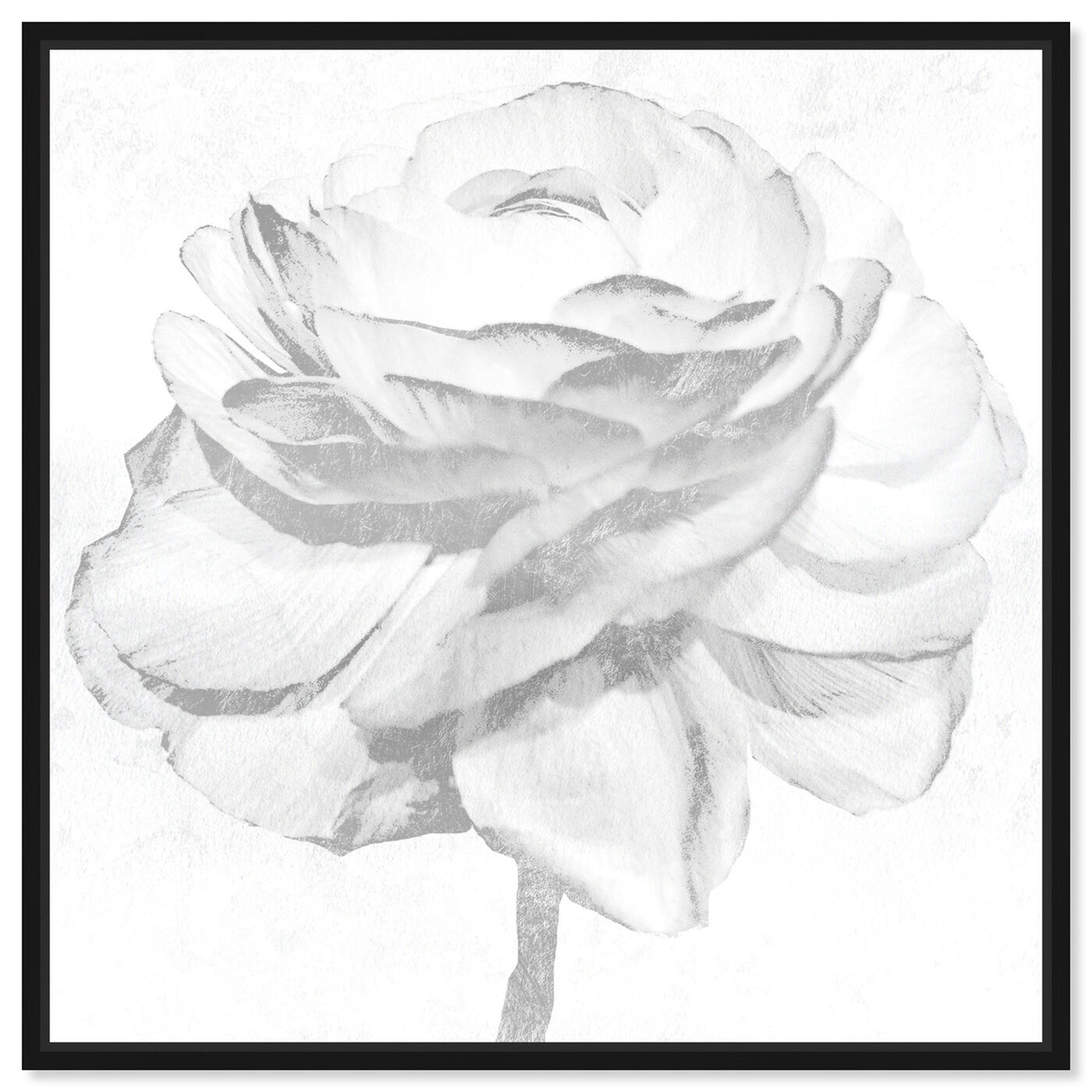 Front view of White Silver Peony featuring floral and botanical and florals art.