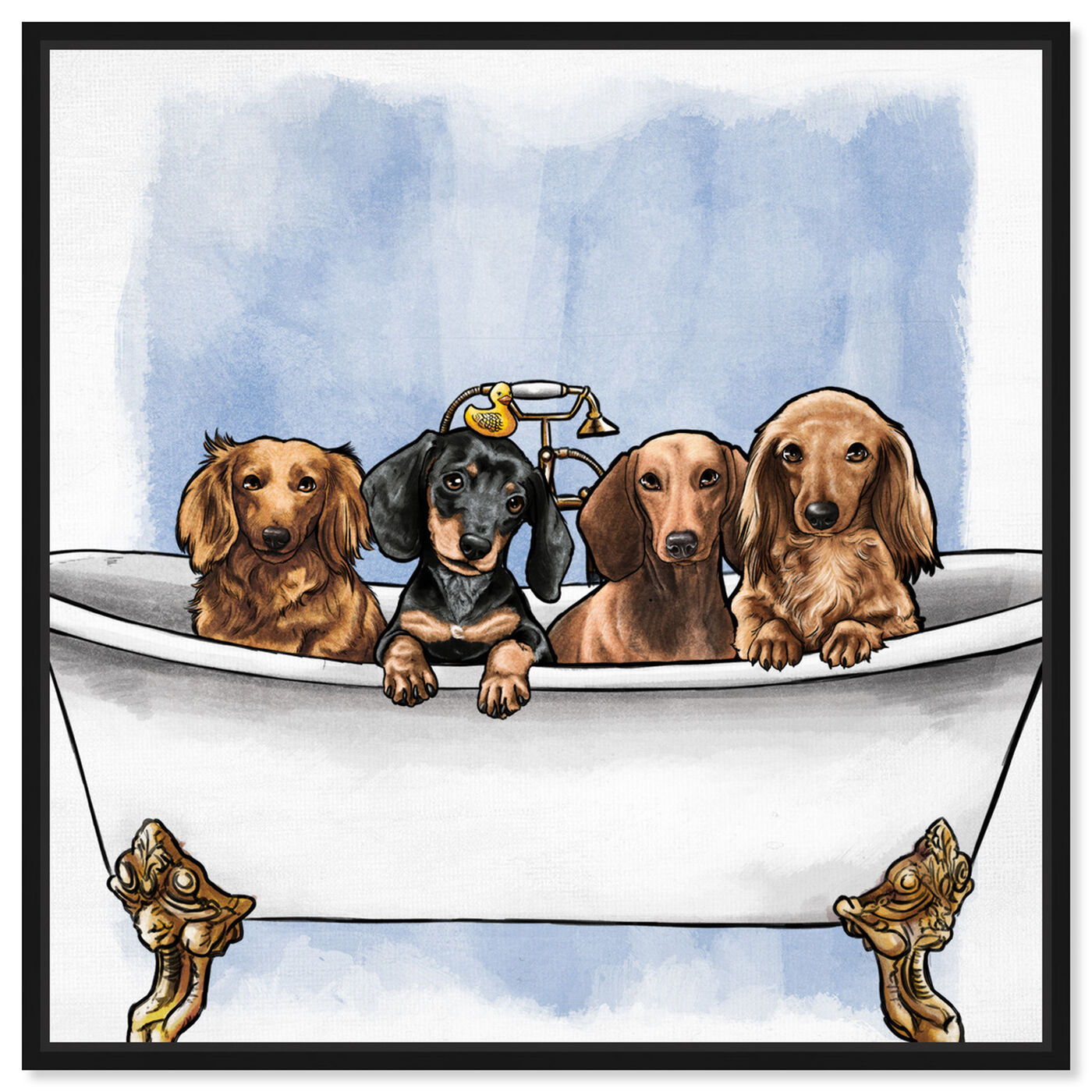 Front view of Dachs in The Tub featuring animals and dogs and puppies art.