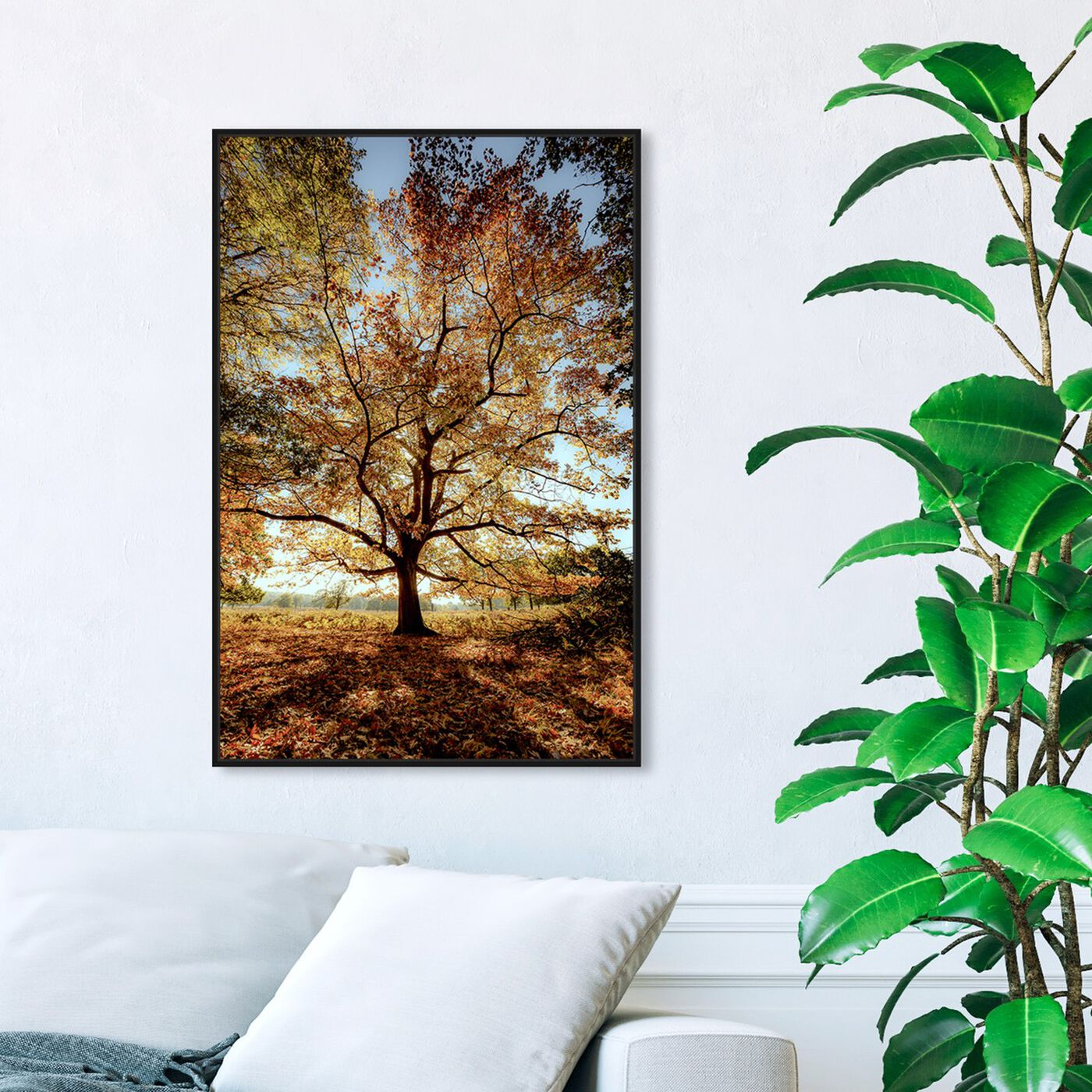 Hanging view of Curro Cardenal - Wisdom Tree II featuring nature and landscape and forest landscapes art.