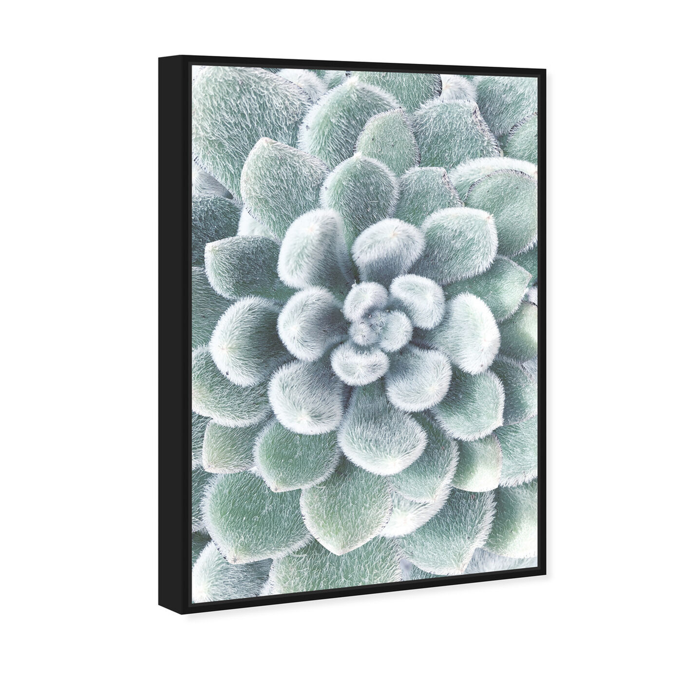 Angled view of Succulent Zoom IV featuring floral and botanical and botanicals art.