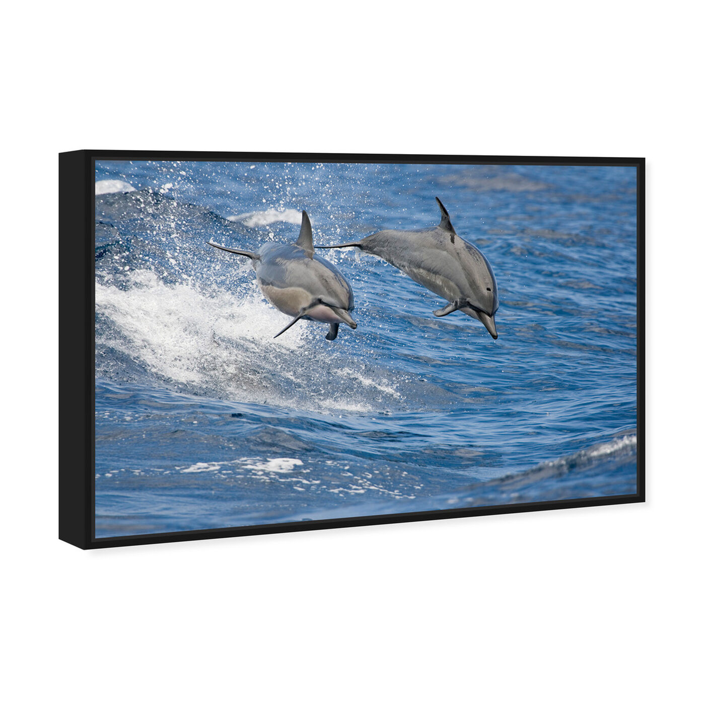 Angled view of Spinner Dolphins Hawaii by David Fleetham featuring nautical and coastal and marine life art.