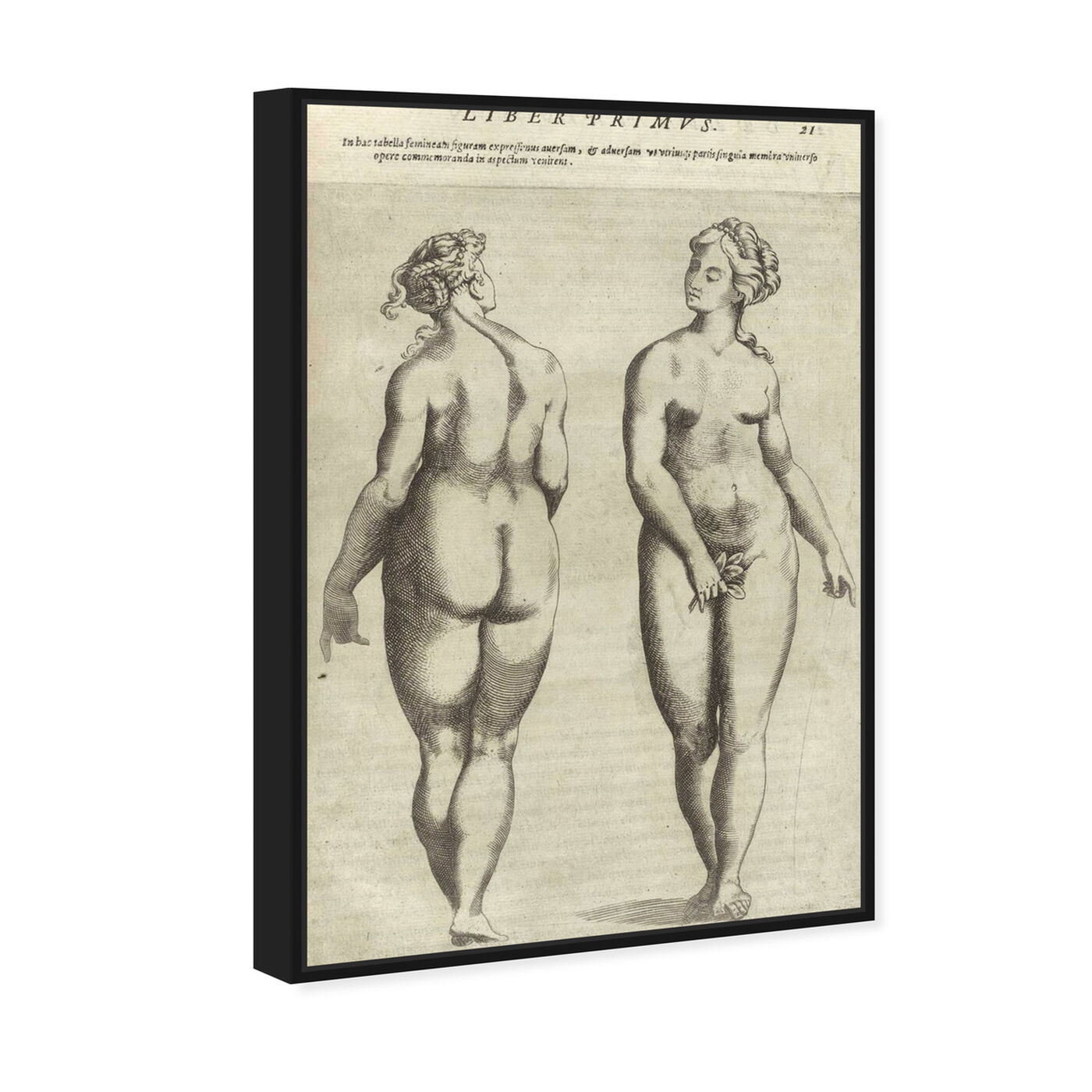 Angled view of Liber Primvs - The Art Cabinet featuring classic and figurative and nudes art.