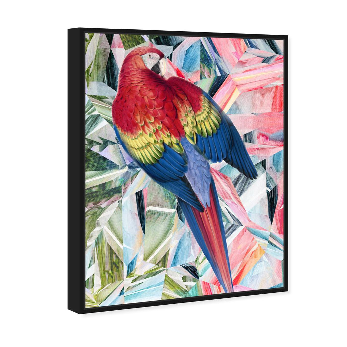 Angled view of Modern Parrot featuring animals and birds art.